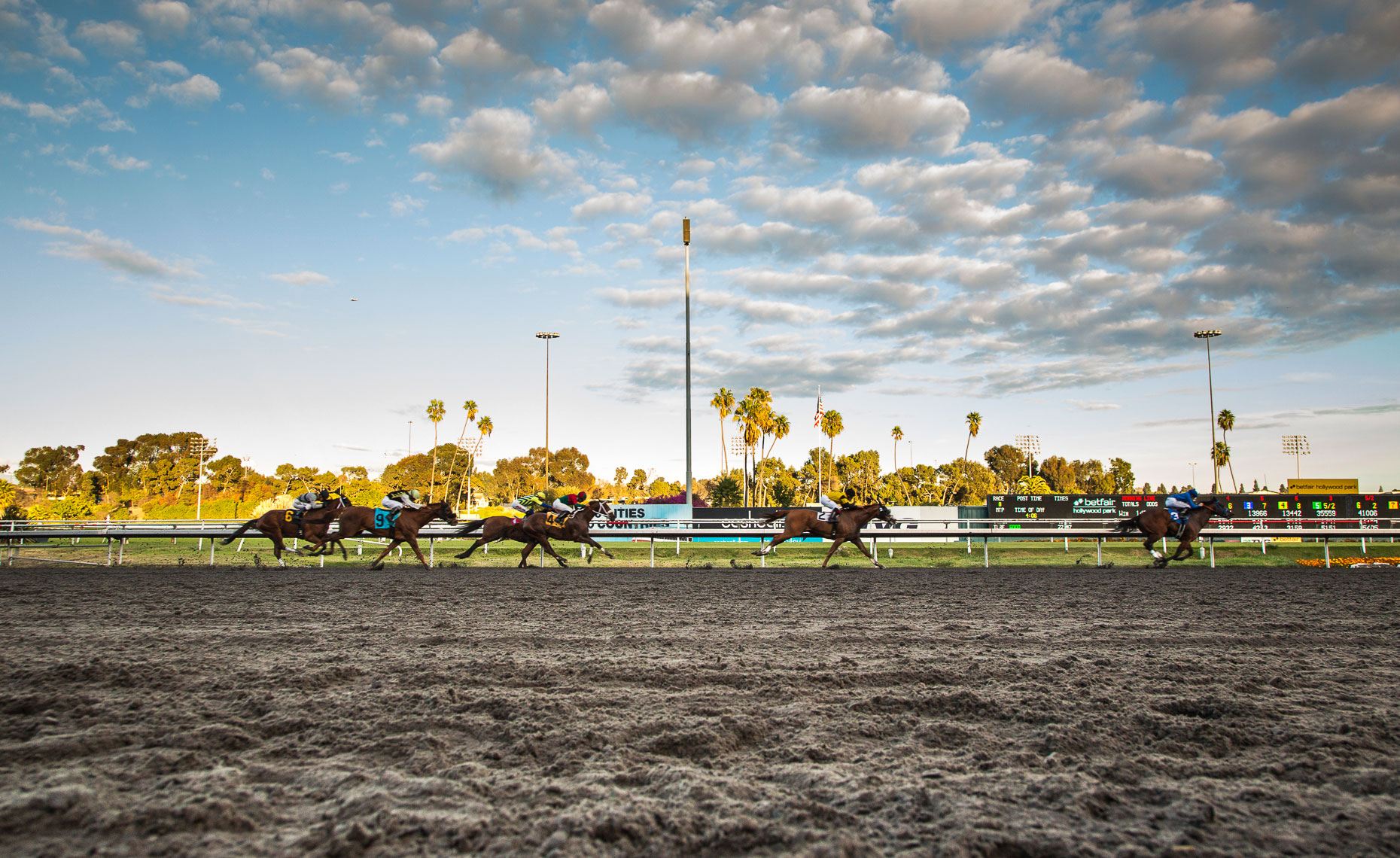 Hollywood Park_11