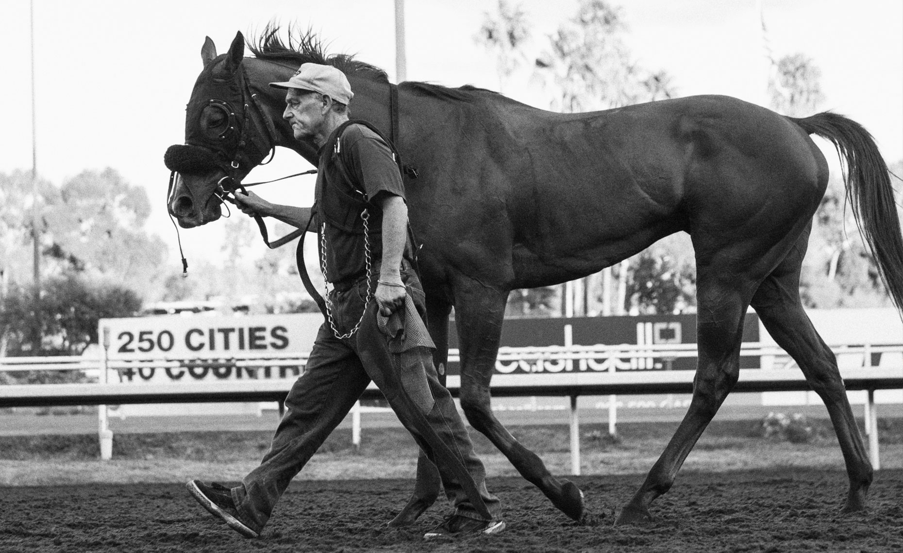 Hollywood Park_12
